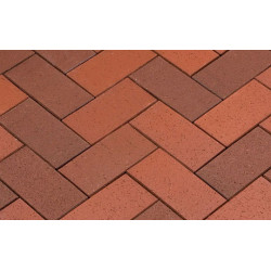 Penter Baltic Klinker Pavers Nuance, 200*100*52